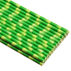 Paper Straw 7.75 Inch Unwrapped Jumbo Bamboo Design - 5000ct per case
