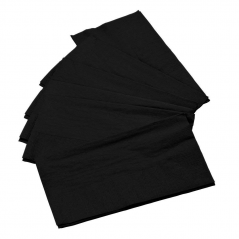 Paper Dinner Napkin Black 2Ply- 100 Count