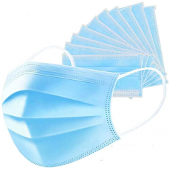 Disposable Ear Loop Face Mask- Pack of 10 Masks